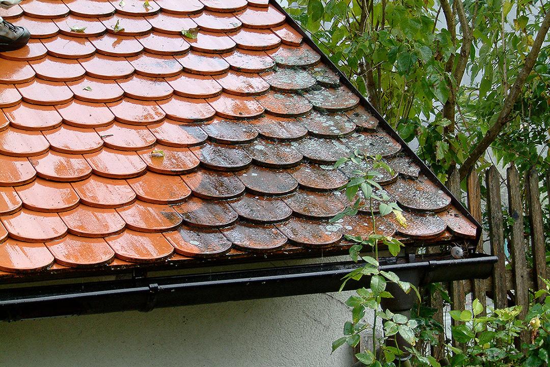 Jacobi-Dachreinigung / Dachpflege mit System